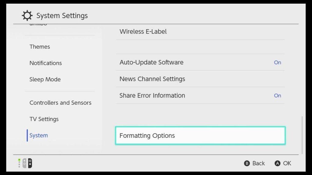 Nintendo Switch Formatting Options